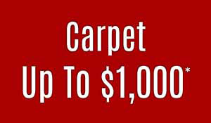 Up To $1000 Carpet Manufacturer Rebate •  FREE Furniture Moving • Free Take Up and Haul Away • Professional Installation • Interest Free Financing